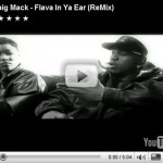 Flava In Ya Ear: Old To The New