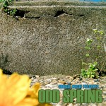 Oddisee – Odd Spring, Mixtape.