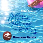 Remix Lungies: Mike Posner – Bow Chicka Wow Wow (Bossman Remix).